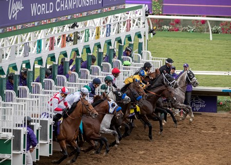 Field for the Breeders Cup Dirt Mile leaving the gate at Del Mar on November 3rd 2017