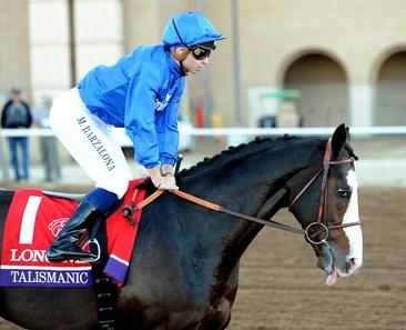 Talismanic Gb Horse Profile Bloodhorse