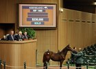Hip 1460, a filly from the first crop of Lea, sells for $230,000 at the Keeneland November sale