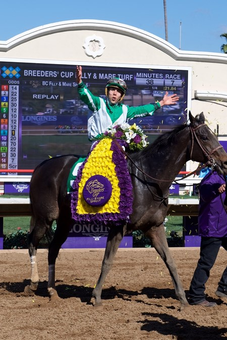 Irad Ortiz celebrates after winning the Breeders Cup Filly and Mare Sprint atop Bar of Gold on November 4, 2017.