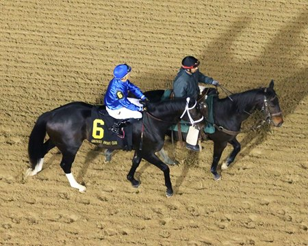 Enticed will make his first start since his Nov. 25 victory in the Kentucky Jockey Club