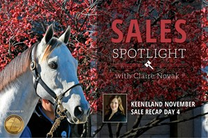 2017 Keeneland November Sale Day 4 Recap
