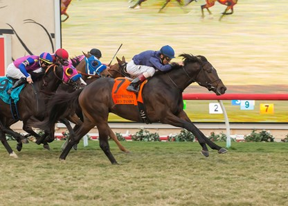 Mo Town and jockey John Velazquez, right, overpower Big Score (Flavien Prat), left, Sharp Samurai (Gary Stevens), second from left, and Channel Maker (Javier Castellano), third from left, to win the G1T, $300,000 Hollywood Derby, Saturday, November 25, 2017 at Del Mar Thoroughbred Club, Del Mar CA.