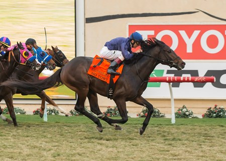Mo Town and jockey John Velazquez win the G1T, $300,000 Hollywood Derby, Saturday, November 25, 2017 at Del Mar Thoroughbred Club, Del Mar CA.