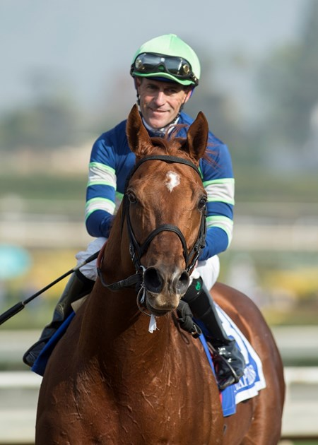 Jockey Gary Stevens guides Giant Expectations to the winner's circle after their victory in the G2, $300,000 San Antonio Stakes, Tuesday, December 26, 2017 at Santa Anita Park, Arcadia CA.