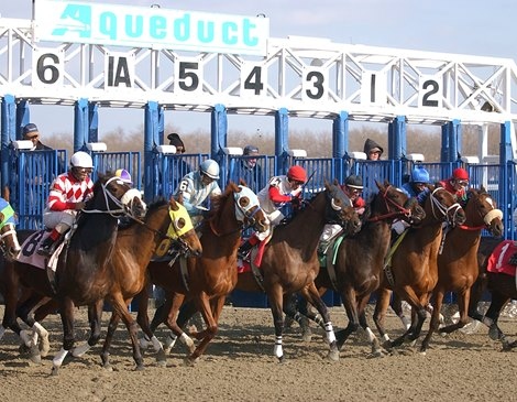 Track Cancellations Aqueduct Calls Off Four Days Bloodhorse
