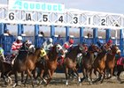 Horses leave the starting gate at Aqueduct Racetrack
