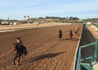 Horses from the barns of trainers Doug O'Neill and Sal Gonzalez jog around the Del Mar main track Dec. 10