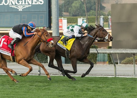 Normandy Farm's Daddys Lil Darling and jockey Mike Smith, right, hold off Madam Dancealot (Corey Nakatani), left, to win the G1, $300,000 American Oaks, Saturday, December 30, 2017 at Santa Anita Park, Arcadia CA.