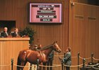 Christmas Kid, hip 78, sold for $4.2 Million during the Keeneland November Sale.