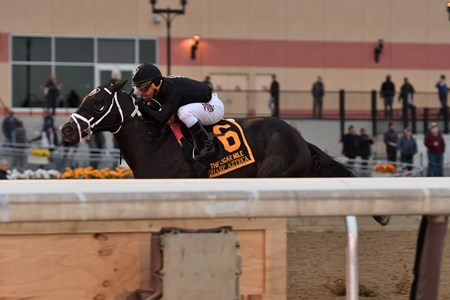 Sharp Azteca wins the 2017 Cigar Mile