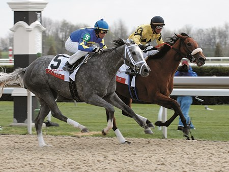 Christmas Kid wins the 2007 Ashland Stakes (G1)