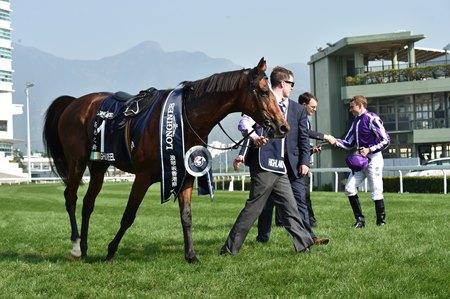 Highland Reel To Swettenham For Southern Season Bloodhorse