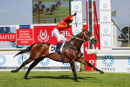 Tap o' Noth wins the 2017 Cape Guineas