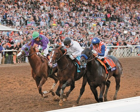 Bayern in the 2014 Breeders' Cup Classic