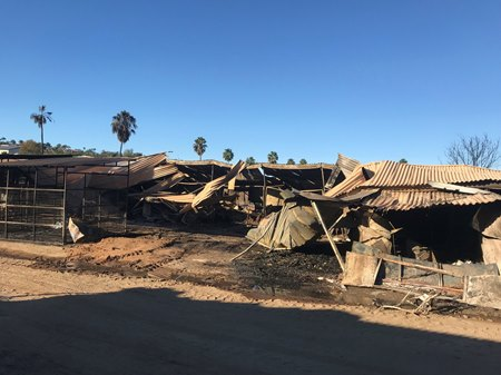 San Luis Rey Downs in the aftermath of the Lilac Fire
