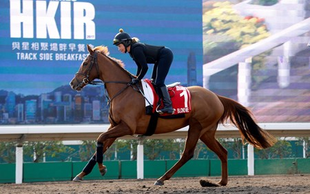 Blond Me - Sha Tin Racecourse - December 9, 2017
