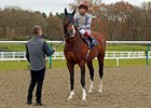 Toast of New York under Frankie Dettori before his comeback victory at Lingfield Park