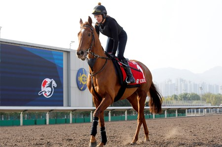 Blond Me - Sha Tin Racecourse - December 8, 2017