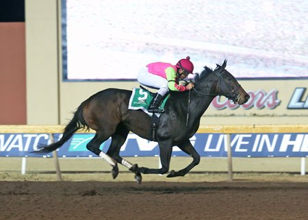 Cosmic Burst wins the Trapeze Stakes at Remington Park in December
