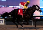 Kingsport and jockey Jesse Campbell gallop home by 2 1/2 lengths to win the Sir Barton Stakes at Woodbine