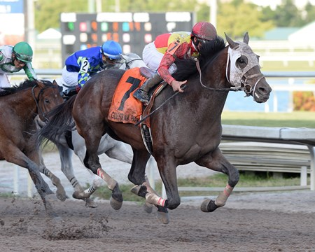 Fear the Cowboy wins the 2017 Harlan's Holiday Stakes