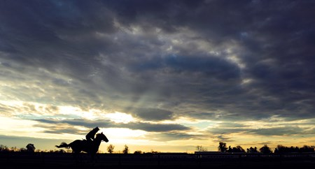 A lone horse and rider work on the main track at the Thoroughbred Training Center in Lexington, Kentucky
