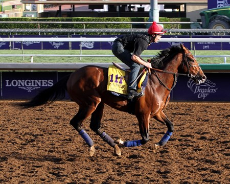 Toast of New York - Breeders's Cup 2014
