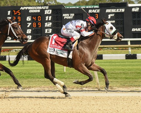 Mo Cash wins the 2017 FTBOA Marion County Florida Sire Stakes