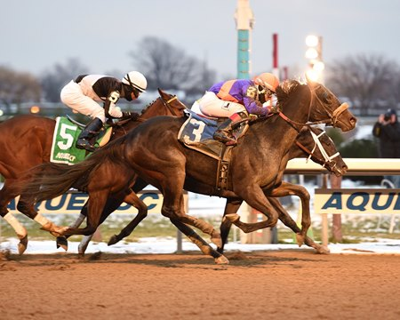 Aunt Babe (outside) wins the Fifth Avenue Stakes over Pure Silver (rail) at Aqueduct Racetrack