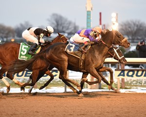 Aunt Babe (outside) wins the Fifth Avenue Stakes over Pure Silver (rail) at Aqeuduct Racetrack