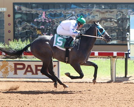 Ghostly Who became the first winner for O'Prado Again at ZIa Park