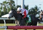On Leave won the My Charmer Stakes in December