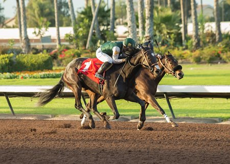 One Fast Broad (outside) runs past Spiced Perfection (inside) to win the Soviet Problem Stakes at Los Alamitos Race Course