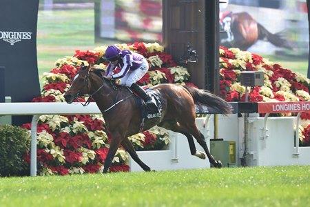 Highland Reel Goes Out A Winner In Hong Kong Vase Bloodhorse