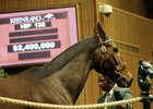 Stanwyck sold for $2.4 million at the Nov. 4 first session of the Keeneland November breeding stock sale.