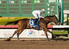 Dream Tree wins the Starlet Stakes at Los Alamitos Race Course