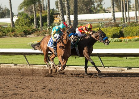 Pegram, Watson & Weitman' McKinzie and jockey Mike Smith, right, eventually win the Grade I $300,000 Los Alamitos CashCall Futurity Stakes after finishing second, but was moved up to first following the disqualification of Solomini (Flavien Prat), outside, who interfered with Instilled Regard (Drayden Van Dyke), center. Solomini was disqualified and placed third,  while Instilled Regard was moved up to second.  Saturday, December 9, 2017, Los Alamitos Race Course, Cypress, CA.