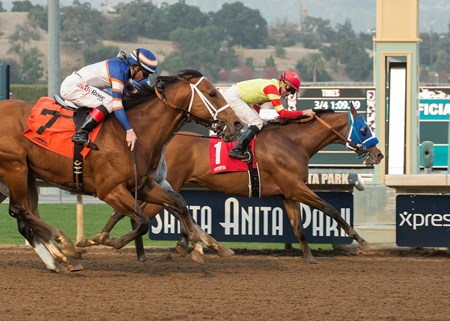 Silent Bird and jockey Kent Desormeaux, right, outleg Tough Sunday (Tyler Baze), left, to win the G3, $100,000 Midnight Lute Stakes, Saturday, December 30, 2017 at Santa Anita Park, Arcadia CA.