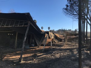 Barns damaged by the Dec. 7 fire at San Luis Rey Training Center