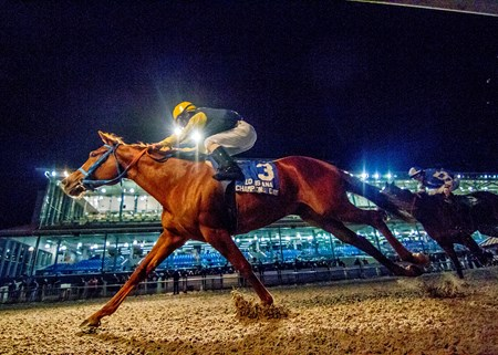 Hay Hollow Stables's Stand Him Up captures the Louisiana Champions day Sprint at Fair Grounds.