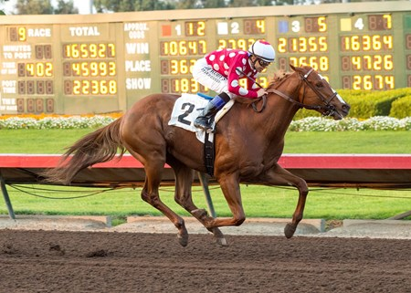 Intimidate and jockey Mike Smith win the $100,000 King Glorious Stakes Saturday, December 16, 2017, Los Alamitos Race Course, Cypress, CA.
