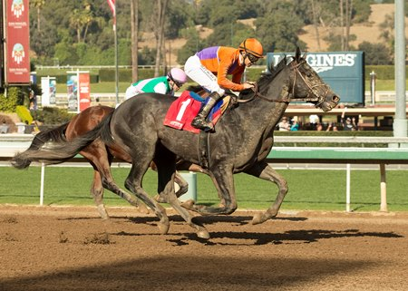 Peace becomes the 32nd winner for leading first-crop sire Violence Dec. 30 at Santa Anita Park