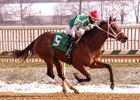 Diamond King wins the Heft Stakes at Laurel Park