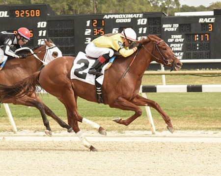 Almond Roca wins the 2018 Gasparilla Stakes