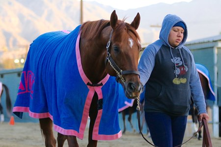 Giant Expectations - Santa Anita, January 4, 2018