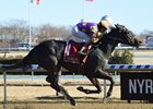 Midnight Disguise wins the Busanda at Aqueduct