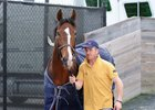Toast of New York and Jimmy McCarthy arrive at Gulfstream Park