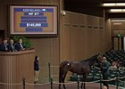 Hip 977, Runway Doll, sells for $145,000 to top the third session of the Keeneland January sale