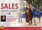 2018 Fasig-Tipton Winter Mixed Sale Preview